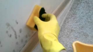 видео Плесень на стене в квартире: что делать и как уничтожить грибок