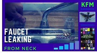 Kitchen Faucet Leaking Water From The Neck How To Fix