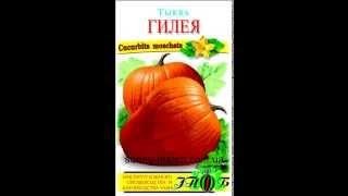 Семена тыквы оптом(, 2013-05-02T11:19:46.000Z)