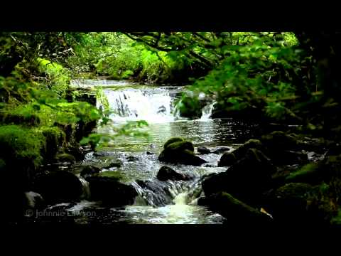 200mins. Classical Music for Studying-Relaxing Study Sounds-