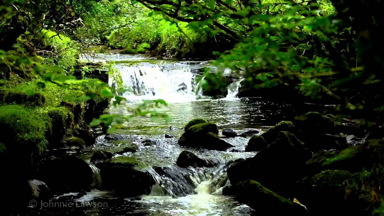 Relax 8 Hours-Relaxing Nature Sounds-Study-Sleep ... - YouTube