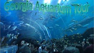 Georgia Aquarium Tour   Best In The Nation!