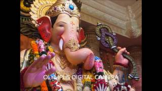Gambar cover Lalabagchya raja: The King of Mumbai