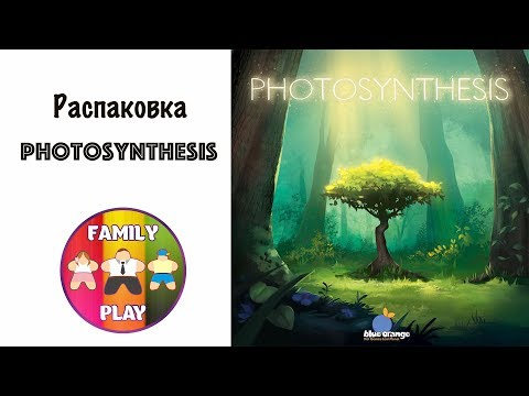 Настольная игра - Photosynthesis Распаковка