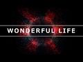 Wonderful Life Stefan Gruenwald
