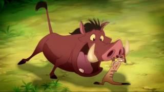 Disney-Wild About Safety