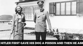 Facts About Hitler's Relationship With His Wife Eva Braun