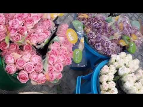 Florist in Kuwait | flowers in kuwait | Salmiya Kuwait