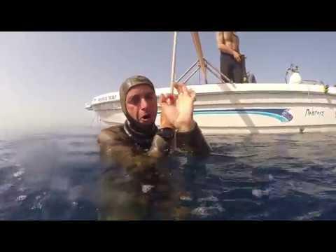 Freediving training week in - Freediving Club Greece - שבוע אימוני צלילה חופשית ב