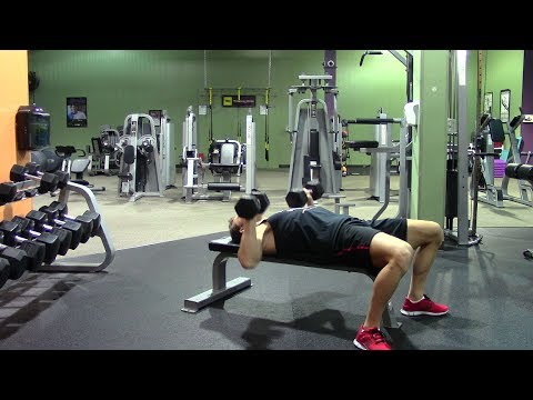 beginner chest triceps workout in the gym  hasfit gym