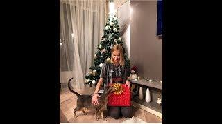 видео Идеи подарков любимой девушке на Новый год