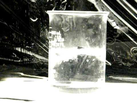 Lithium Reacts With Water