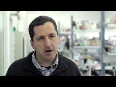 Global Impact of BioEngineering at Hebrew U