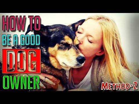 how-to-be-a-good-dog-owner-||-method-2-||-dog-facts