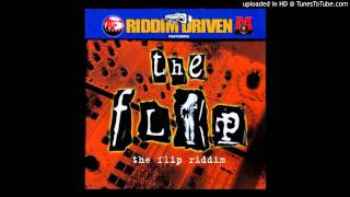Dj Shakka The Flip Riddim Mix - 2002.mp3