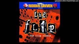 Dj Shakka - The Flip Riddim Mix - 2002