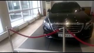 Олененок в салоне Mercedes-Benz в Москве
