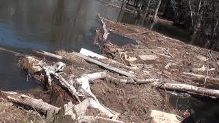 Yosemite Flood Damage 4 8 18 B