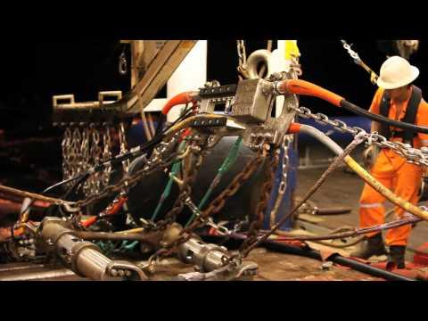 Seismic Life : Geco Topaz