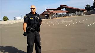 Flash Bang Grenade Test   Internet Videos