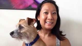 Mental Health Benefits of Pet Ownership