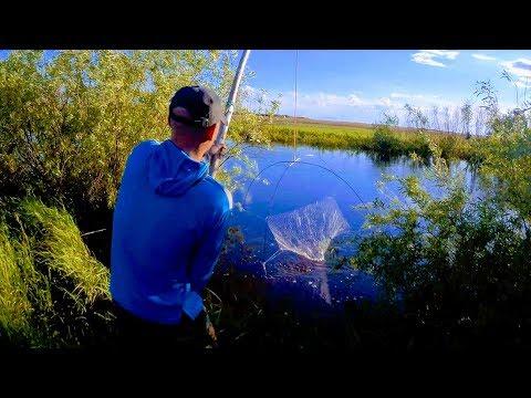 Рыбалка на подъемник
