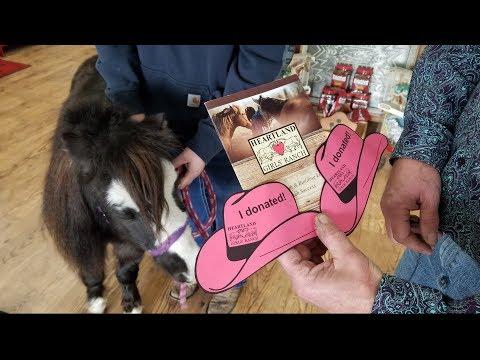 Heartland Girls Ranch - Donate Today!