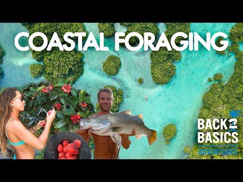 DAY 95: COASTAL FORAGING & FISHING REMOTE ISLANDS (Barramundi, Tropical Fruits & Coconuts) Ep: 32