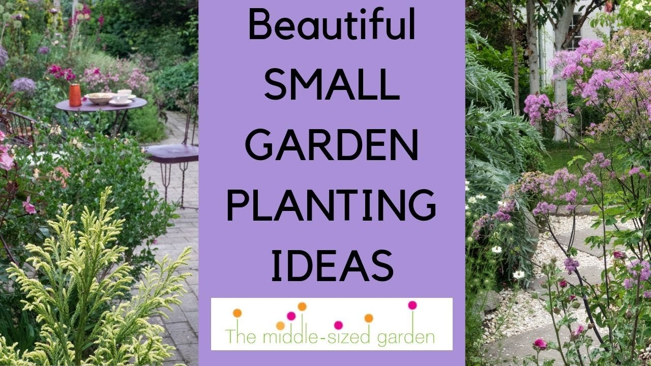 Small Garden Planting Ideas Plants For Narrow Or Small Gardens