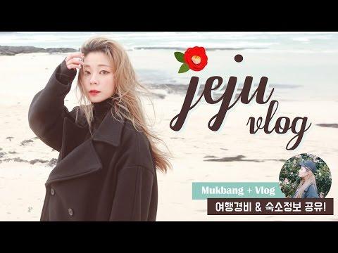 제주도 먹방 Vlog + 경비공개!!! Jeju island Mukbang Vlog / HEYNEE