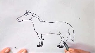 horse easy step drawing sketch draw beginners steps children drawings sketches paintingvalley