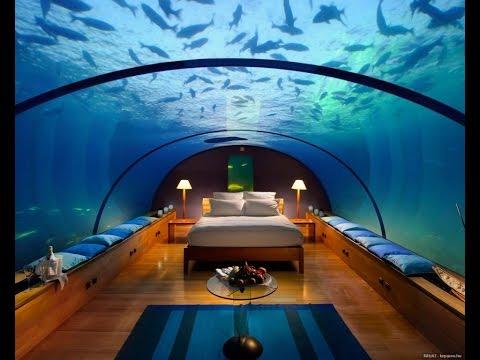 44 Home Aquarium Unexpected Design