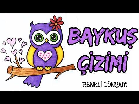 Baykus Nasil Cizilir Baykus Cizimi How To Draw An Owl Renkli