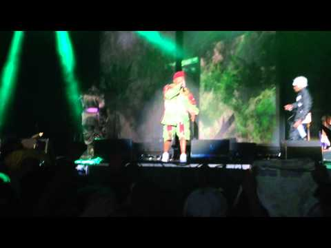 Outkast - Hootie Hoo/Crumblin' Erb/Southernplayalisticadillacmuzik (Live at CounterPoint 2014)