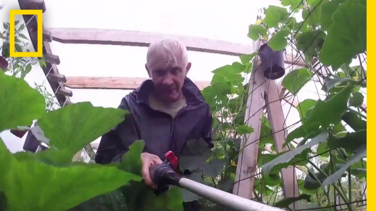 Growing Greens (Deleted Scene) | Life Below Zero