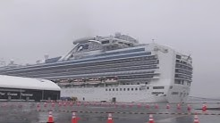 99 new cases confirmed on Japan cruise ship, total number stands at 454