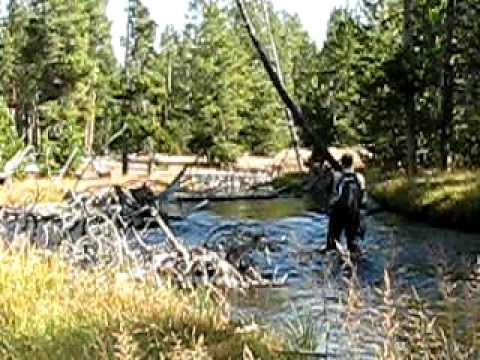 Mason See Fly Fishing Nez Perce Creek in Yellowstone National Park Sept 2009