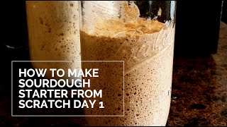 How to Make Sourdough Starter Day 1: Creating Our Starter from Scratch