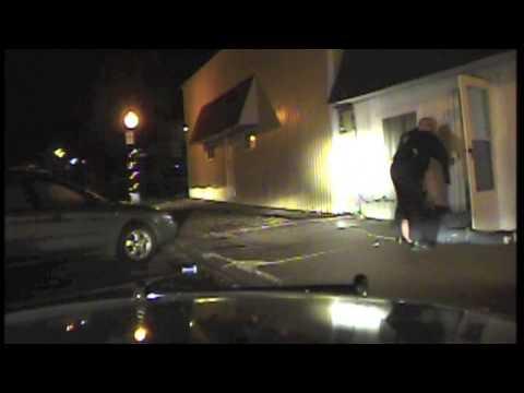 Colfax man pulls handgun on police during arrest