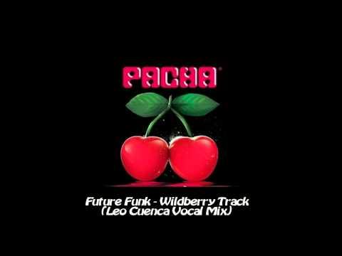 Future Funk - Wildberry Track (Leo Cuenca Vocal Mix) - HD