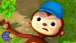 Little Baby Bum en Español   Pop! La Comadreja   Canciones Infantiles   Dibujos Animados