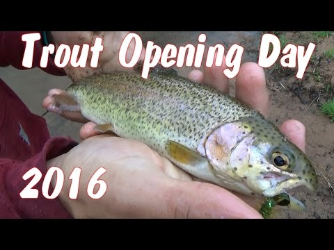 Opening Day Trout Fishing Pennsylvania 2016
