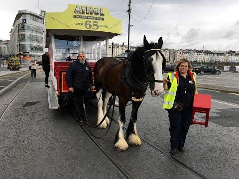 Douglas Promenade Horse Trams and a Black Cat [Isle of Man July 2016]