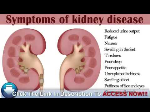 watching out for early symptoms of kidney disease in diabetics, Human Body