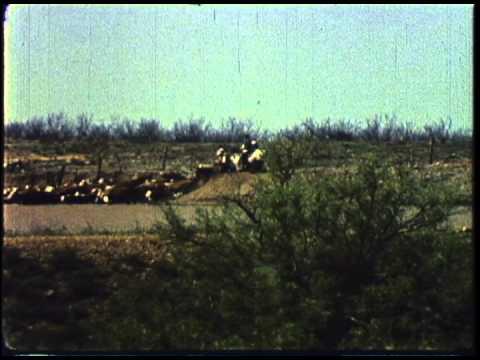 The Goodnight-Loving Trail (1960)