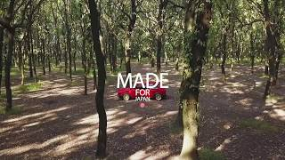 Made for Japan - Golf mk1 -