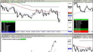 Forex Trend-Trading System