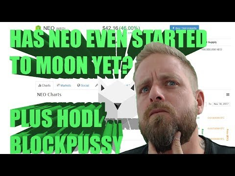 🙀Lets talk about NEO, my beard and a how to HODL pussy