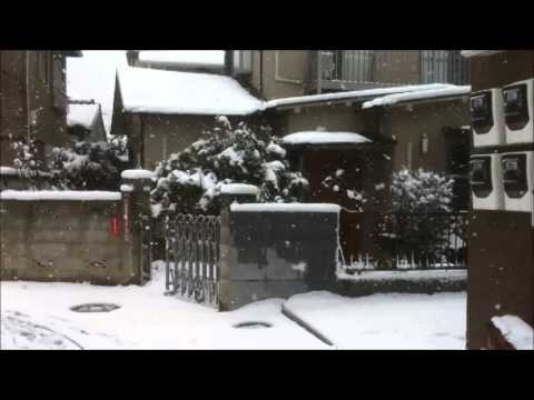 Suginami-ku Snow