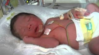 待望の赤ちゃんが生まれました! 名前は鈴木大河ルーカス! もう感動が...